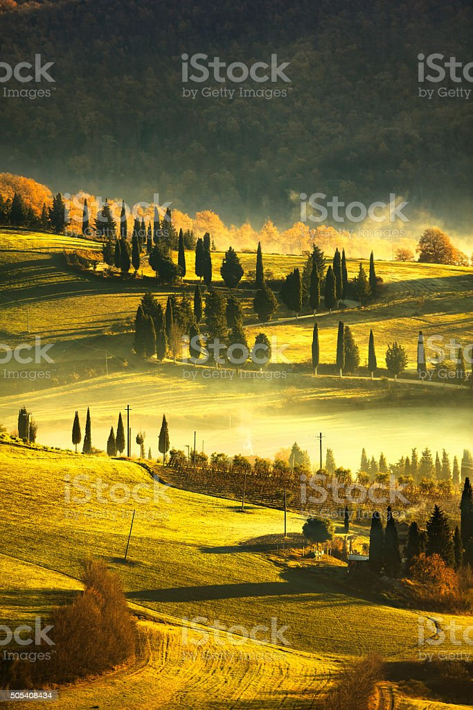 Tuscany foggy morning, farmland and cypress trees. Italy. stock photo