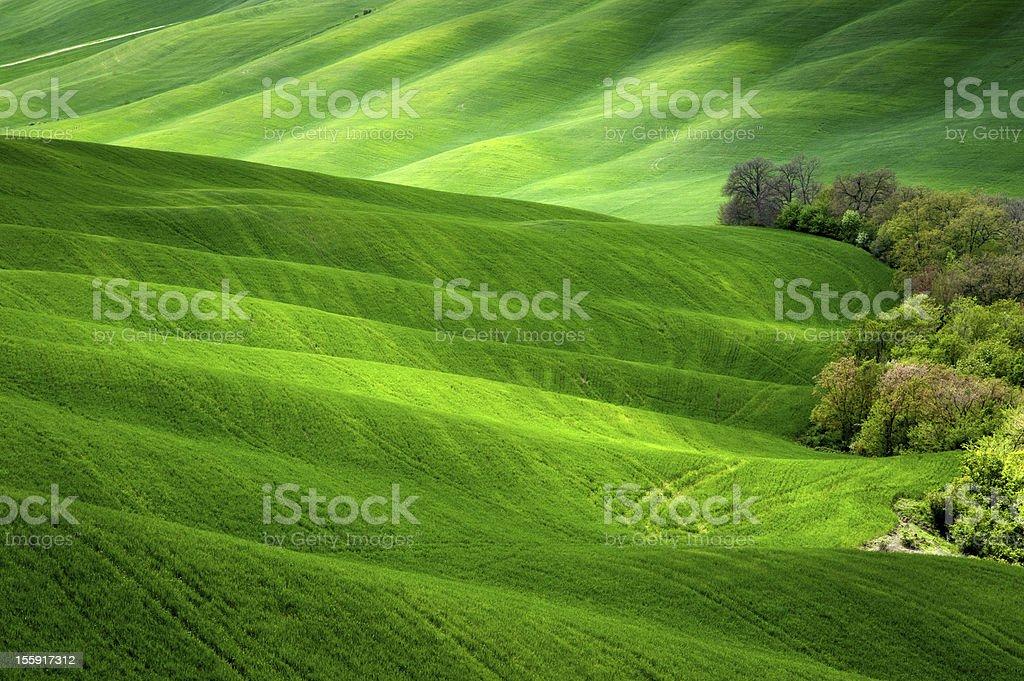 Tuscany Hills stock photo