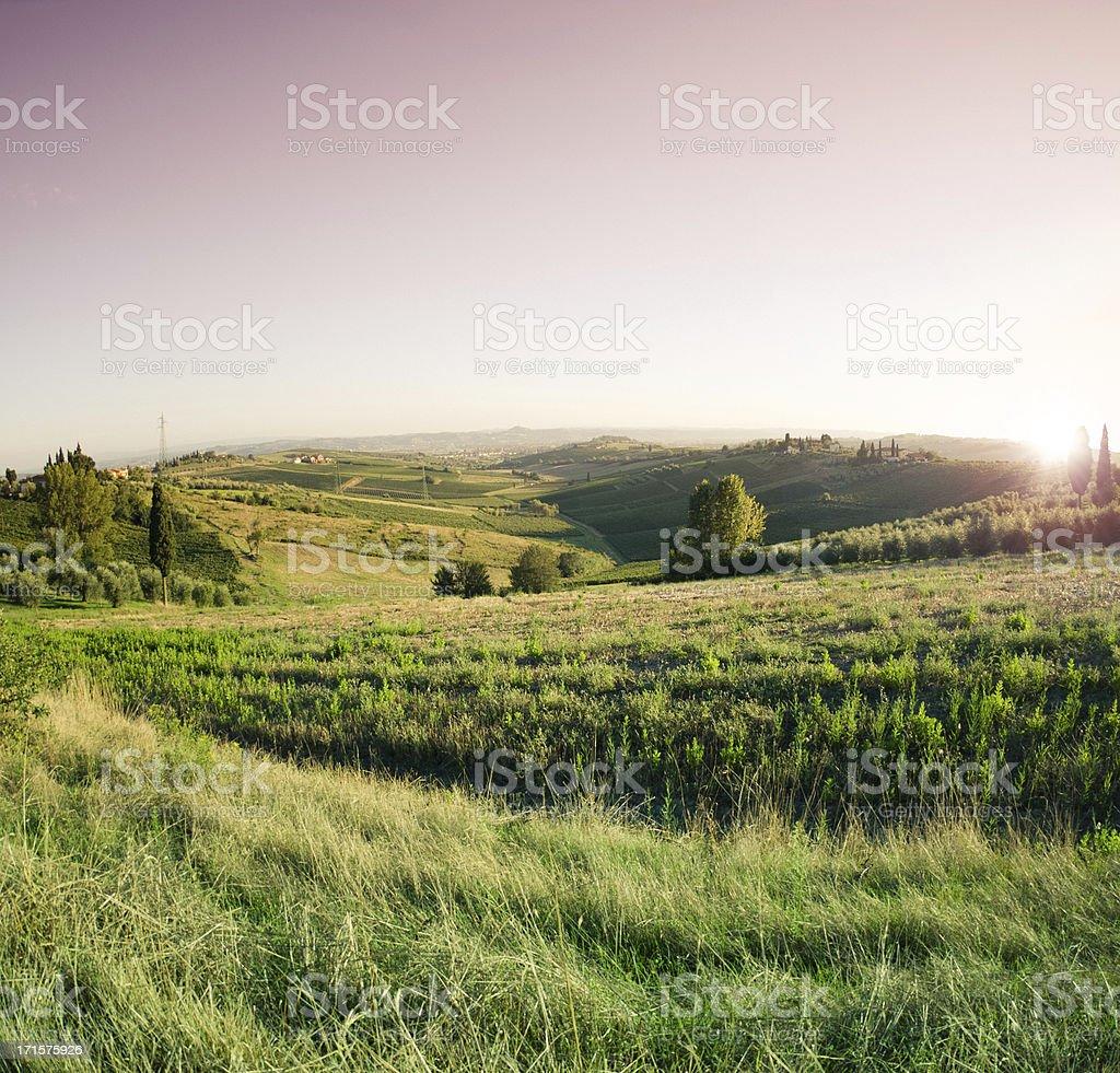 Tuscany hills sunset royalty-free stock photo