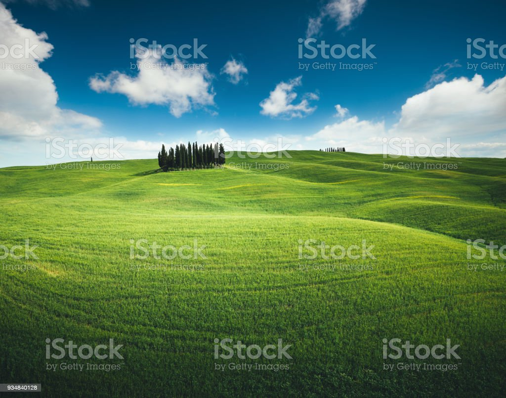 Tuscany Hills With Cypress Trees stock photo