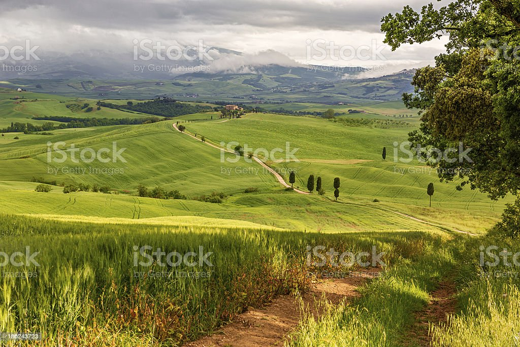 Tuscany hilly landscape near Pienza, Italy royalty-free stock photo