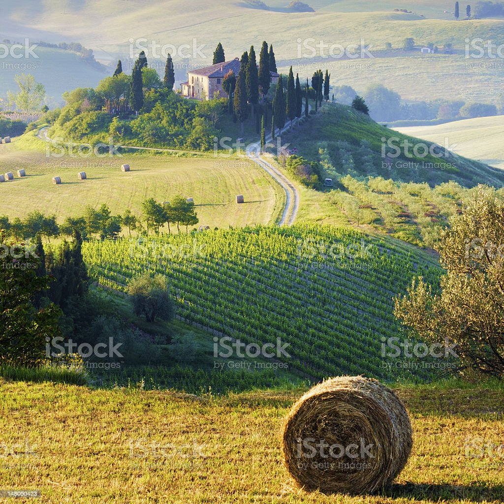 Tuscany, italy stock photo