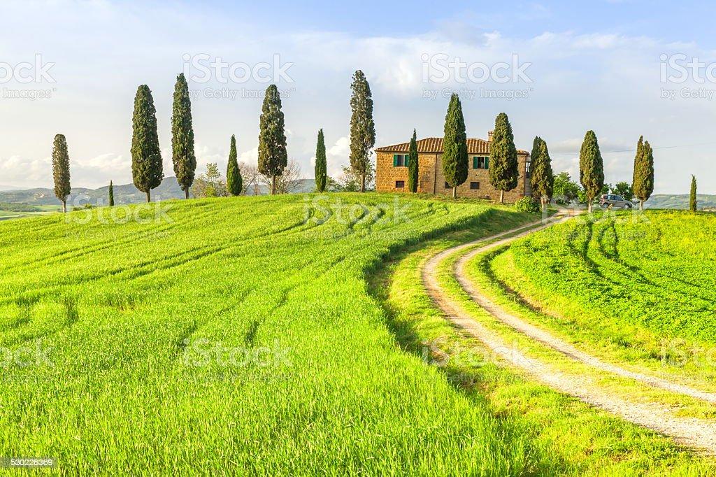 Toscana, Italia - foto stock