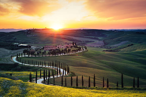 tuscany landscape at sunset - italy stock photos and pictures