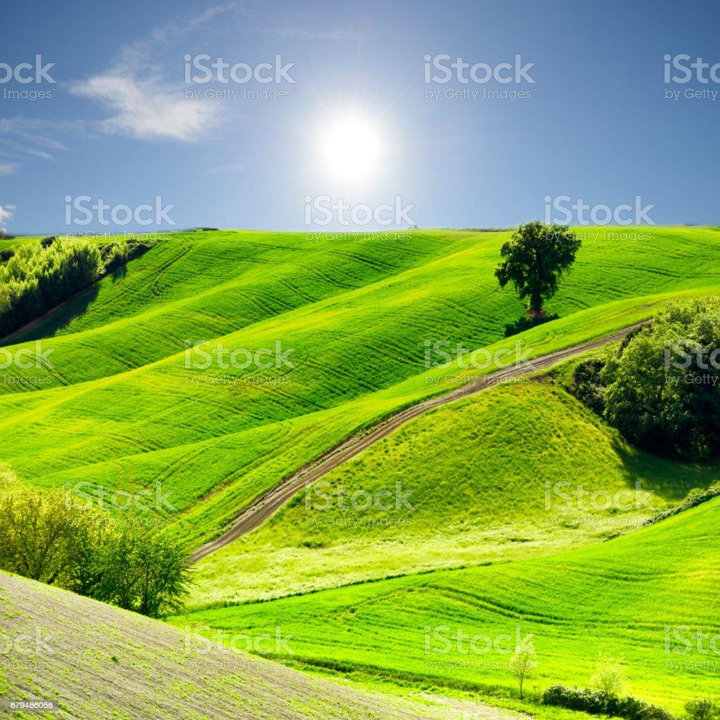 Tuscany landscape, Italy royalty-free stock photo