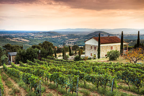 Tuscany Landscape  villa stock pictures, royalty-free photos & images