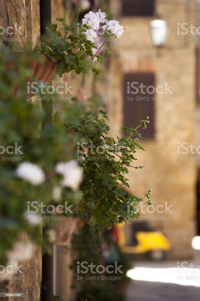 Tuscany landscape royalty-free stock photo