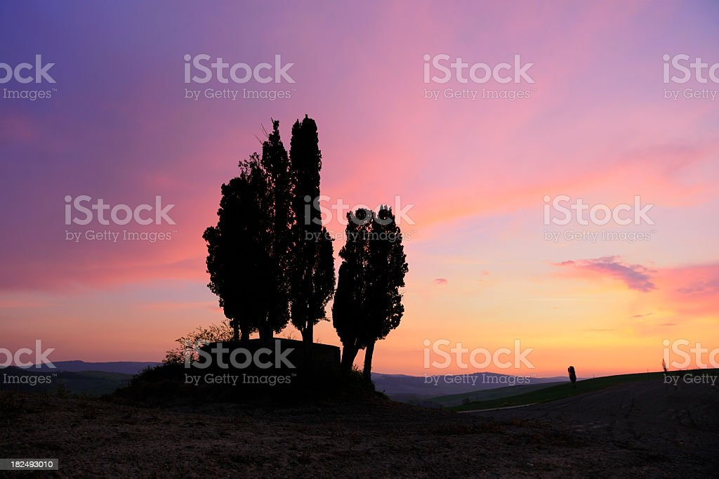 Tuscany Landscape with Cypress Trees on Hill at Sunset royalty-free stock photo