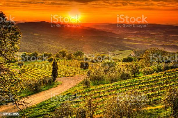 Tuscany landscape with vineyards at sunset chianti region val dorcia picture id182062555?b=1&k=6&m=182062555&s=612x612&h=6hry6eiu6upyj6jsbvqguqtmyj9vmi79ocsfpw8jxii=