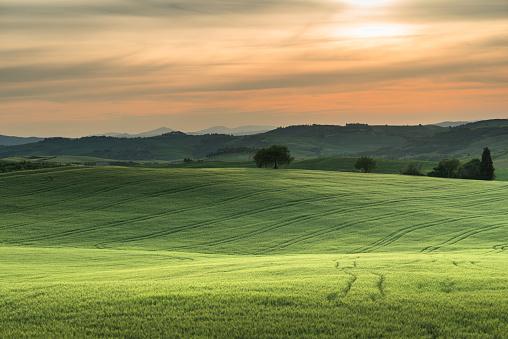 tuscany lanscape, sunset time, Italy