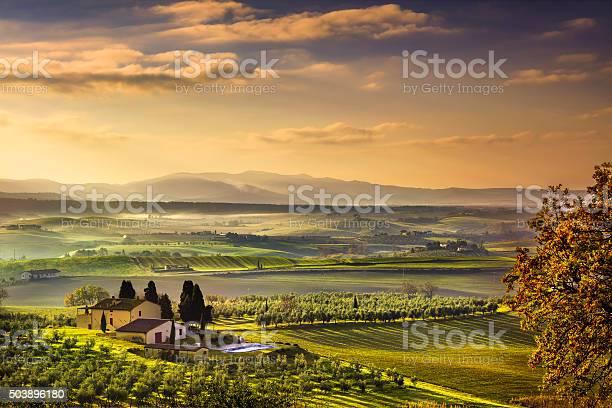 Tuscany maremma foggy morning farmland and green fields italy picture id503896180?b=1&k=6&m=503896180&s=612x612&h=51lrz3znhcraebx8fkc7dmdrbssigihfr4hunu21d s=