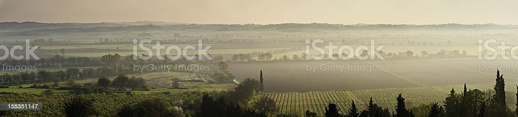 Tuscany morning mist vinyards Italy royalty-free stock photo