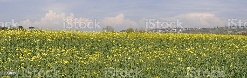 Tuscany panorama stock photo