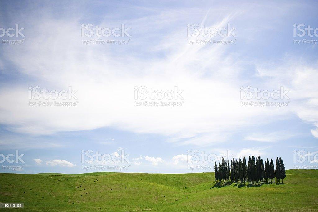 Tuscany Lizenzfreies stock-foto