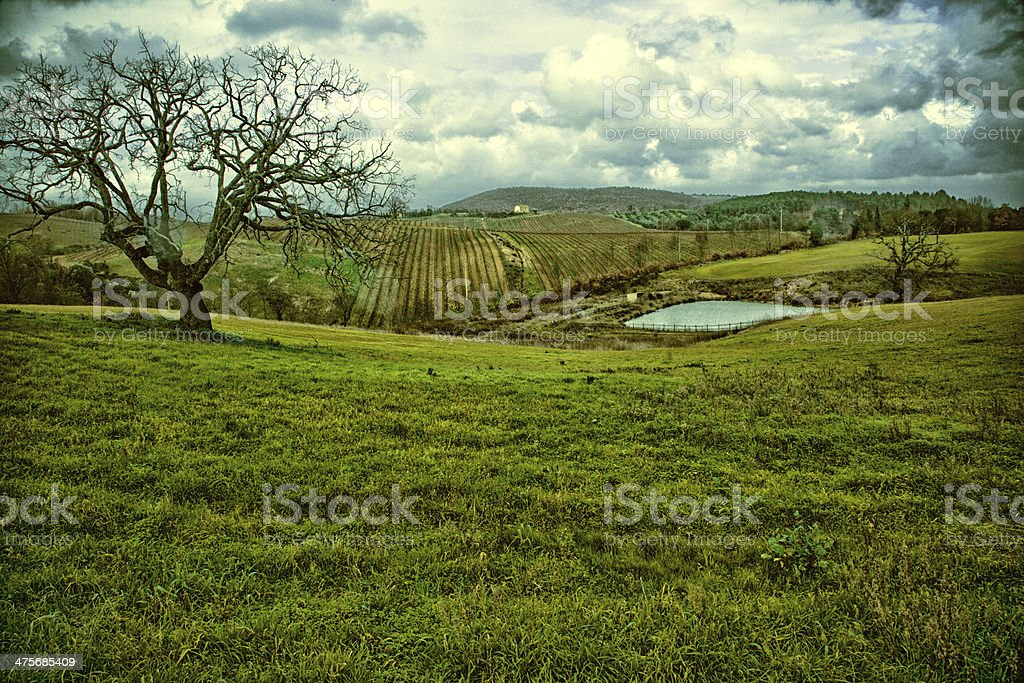 Tuscany; Rolling Landscape royalty-free stock photo