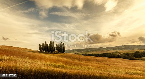 tuscany sunny landscape at sunset. Hills with cypress