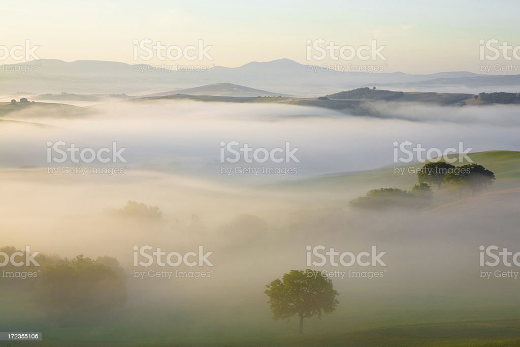 tuscany sunrise - Royalty-free Agricultural Field Stock Photo