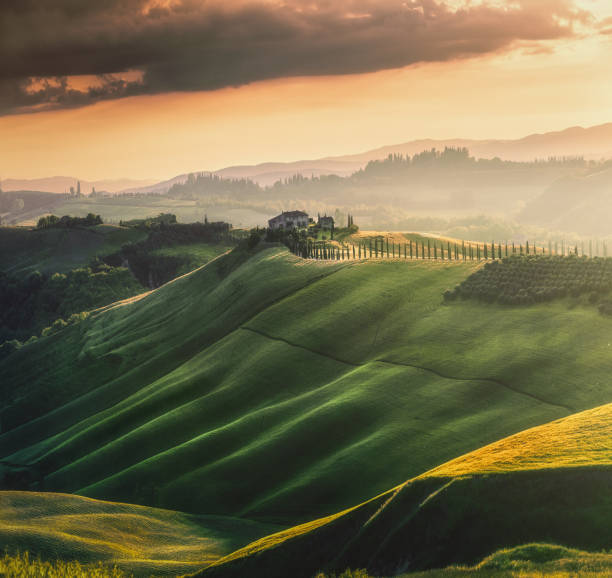 Tuscany sunset landscape view of green hills fringed with cypress trees Italy, Europe Magical sunset and rural landscape view of Picturesque agrotourism with characterized green top hill farms of olive groves and vineyards typical curved road with cypress at Crete Senesi in Toscana, Italia, Europe pienza stock pictures, royalty-free photos & images