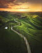 istock Tuscany sunset landscape view of green hills fringed with cypress trees Italy, Europe 1212781992