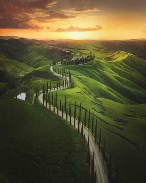 Tuscany sunset landscape view of green hills fringed with cypress trees Italy, Europe stock photo