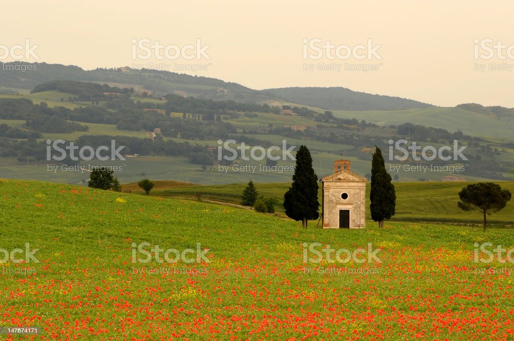 Tuscany, Val d'Orcia, Italy - Chapel with Poppies in Springtime stock photo
