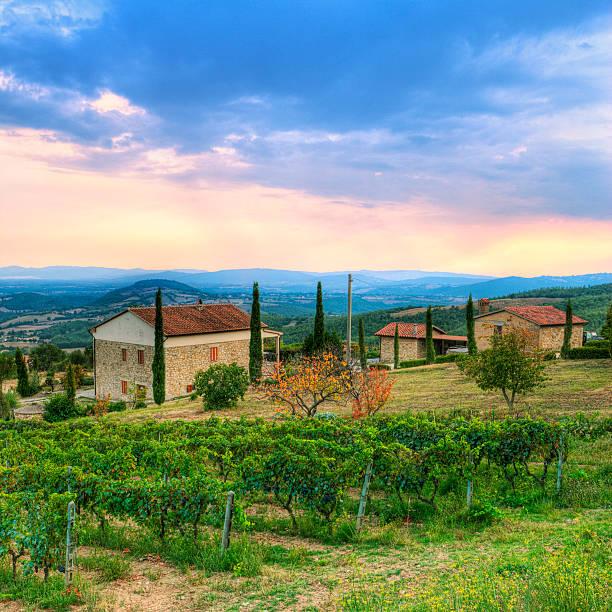 der toskana vineyard - ferienhaus toskana stock-fotos und bilder