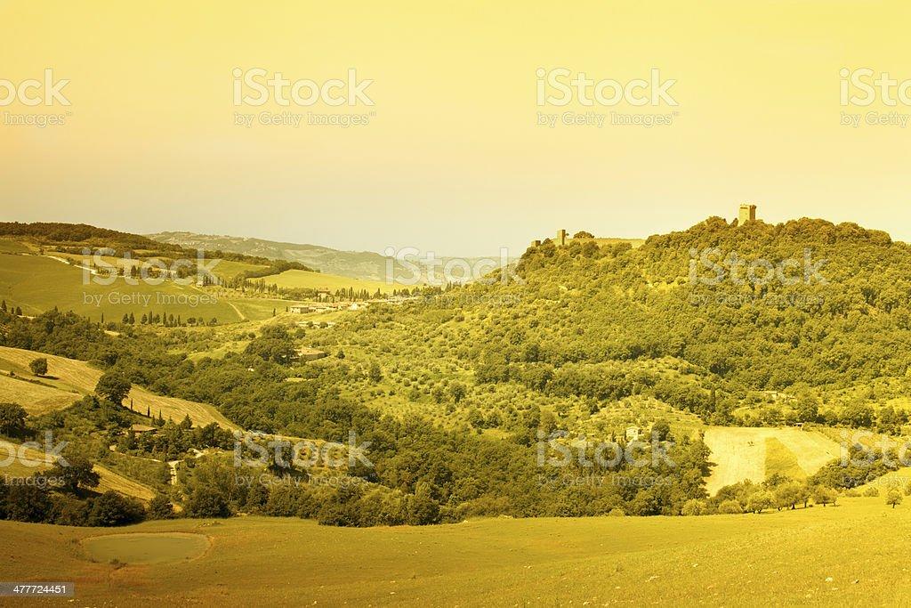 tuscany vineyard royalty-free stock photo