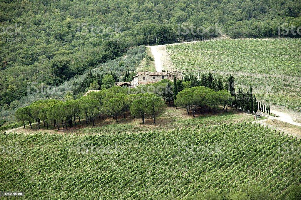 tuskany winery stock photo