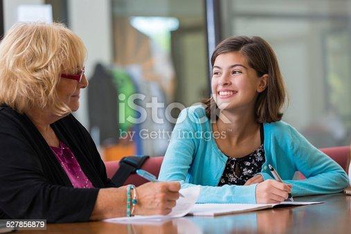641755828 istock photo Tutor explaining homework assignment to preteen student 527856879