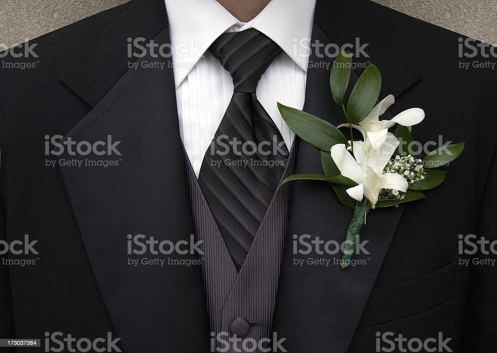 Tuxedo royalty-free stock photo