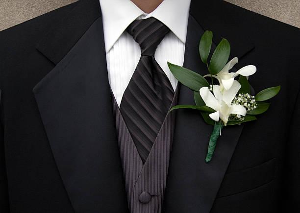 tuxedo - tuxedo stock photos and pictures
