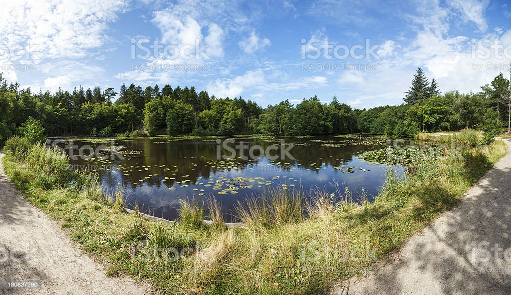 Tversted plantage royalty-free stock photo