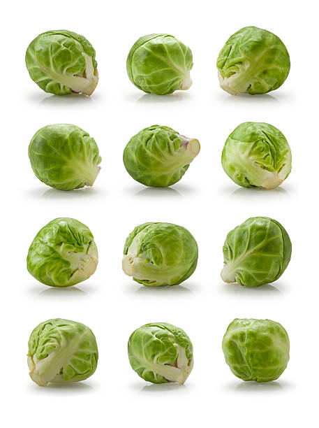 Twelve brussels sprouts stock photo