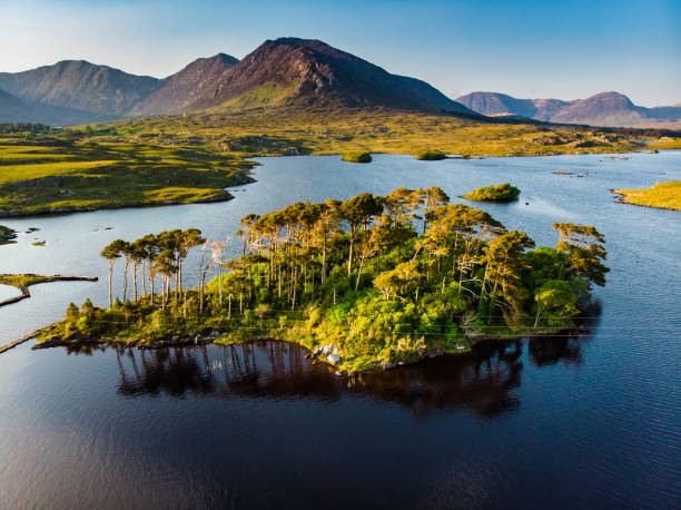 Twelve Pines Island, standing on a gorgeous background formed by the sharp peaks of a mountain range called Twelve Pins or Twelve Bens, Connemara, County Galway, Ireland stock photo