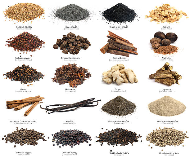 Twenty spices. XXXL. Second part. Similar photos on my portfolio. Spices isolated on white with his name in english and its scientific name. This image is one of a serie of three. The spices are: sesame seeds, Poppy seeds, Black onion seeds, Garlic, Sichuan pepper, Brown cardamom, Cassia sticks, Nutmeg, Clove, Star anise, Ginger, Liquorice, Sri Lanka cinnamon sticks, Vanilla, Black pepper powder, White pepper powder, Jamaica pepper, Juniper berry, Black pepper grain, White pepper grain. allspice stock pictures, royalty-free photos & images