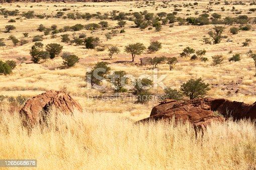 Twentyfontein rock art site, Damaraland, southern Kaokoveld wilderness, Namibia