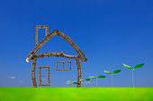 Close-up of twig home with row of fresh young green leaves against blue sky.\nNew life concepts.