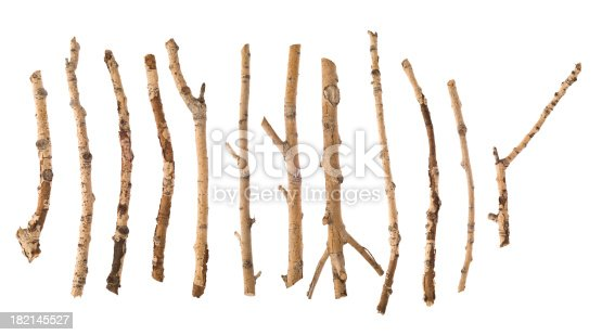 Twigs isolated on white.