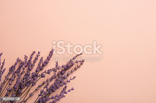 istock Twigs of Lavender Flowers Arranged in Lower Border on Solid Pink Background. Easter Mother's Day Wedding Wellness Cosmetics Concept. Minimalist Style. Website Banner Template Copy Space 932353708