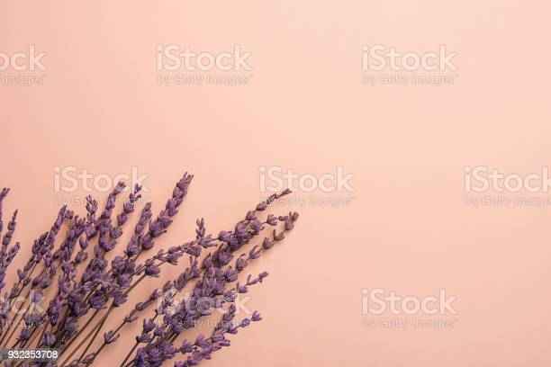 Twigs of lavender flowers arranged in lower border on solid pink picture id932353708?b=1&k=6&m=932353708&s=612x612&h=yw6u4iqnbrb92iga2ngkzag1hyw0600si xvh59goo4=