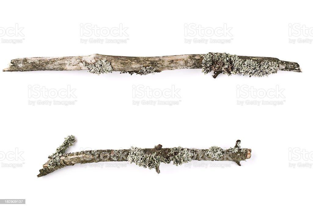 Twigs on white backround royalty-free stock photo
