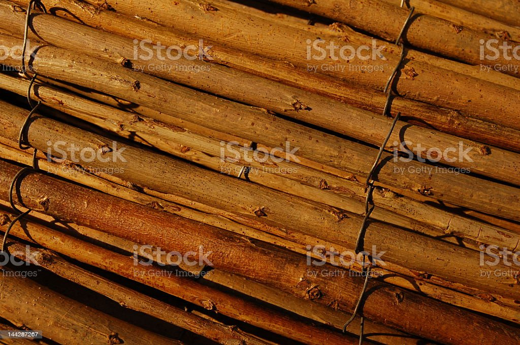 Twigs stock photo