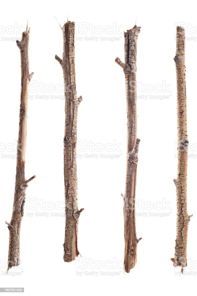 Twigs, Sticks and Branches Isolated on White royalty-free stock photo