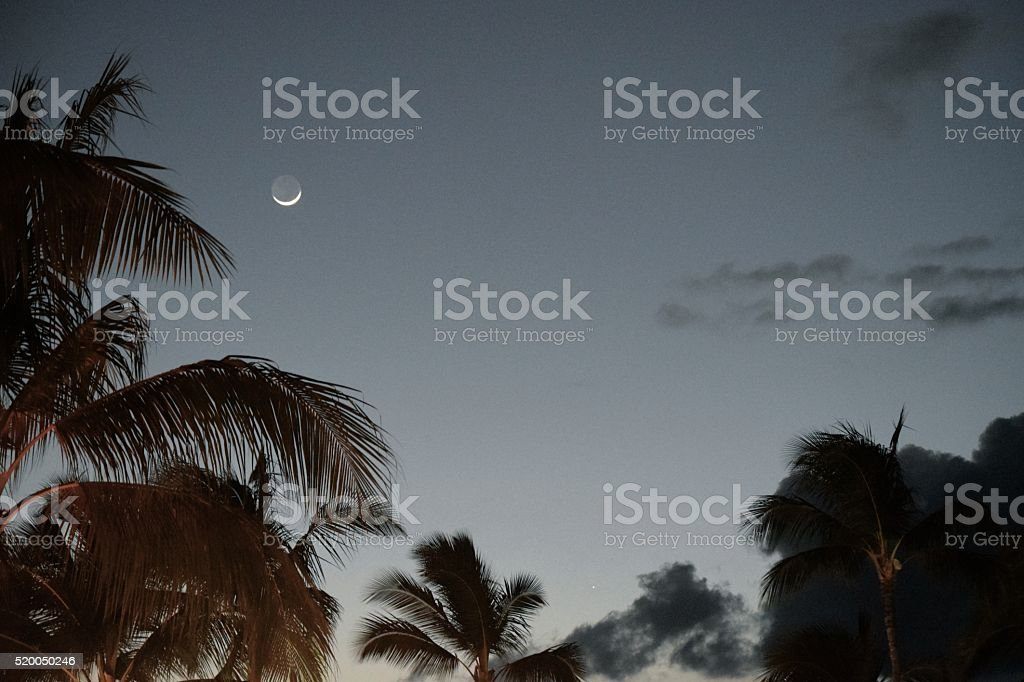 Twilight Crescent Moon stock photo