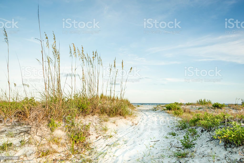 Twilight Dunes to the Sea royalty-free stock photo