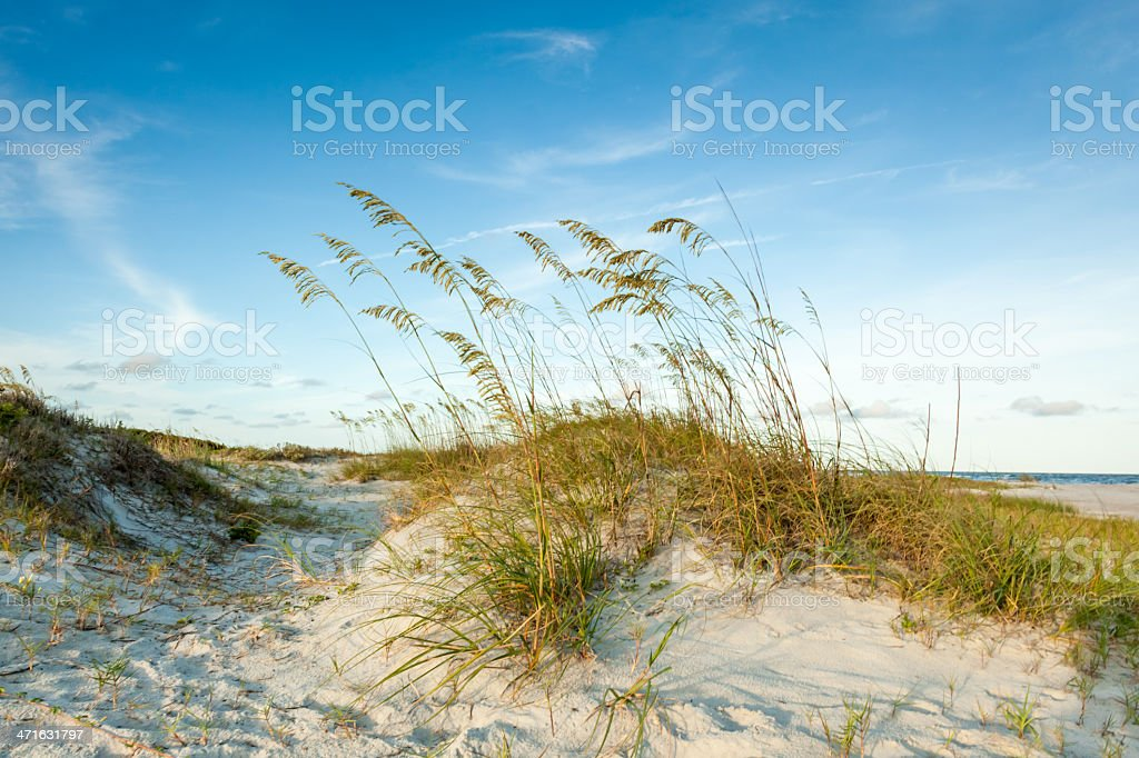 Twilight Dunes Vision stock photo