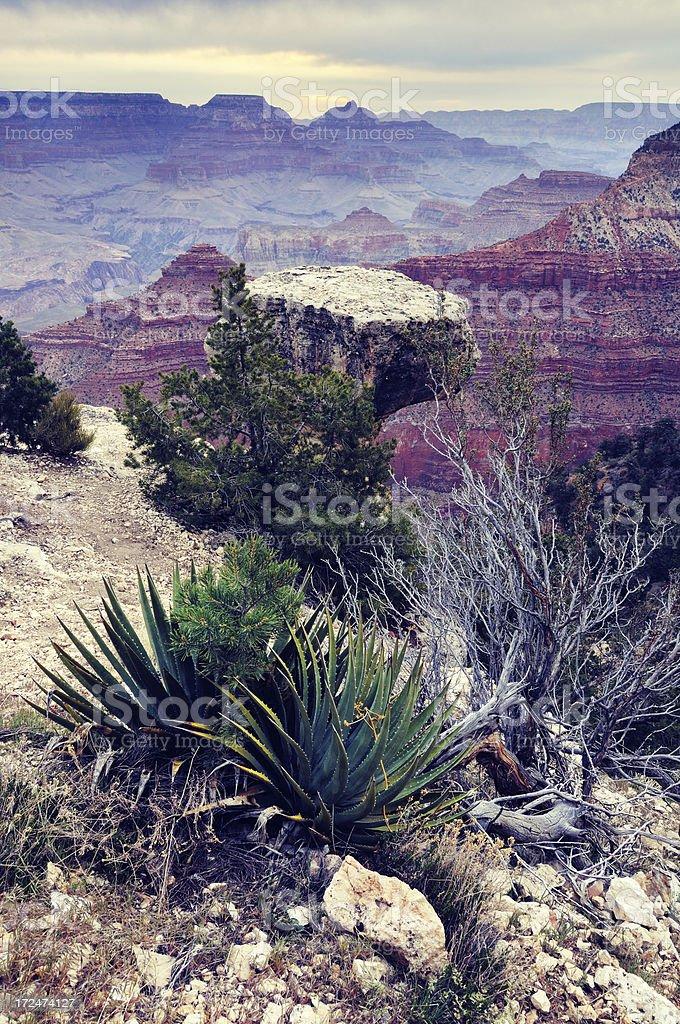 Twilight landscape of Grand Canyon, Arizona, USA royalty-free stock photo