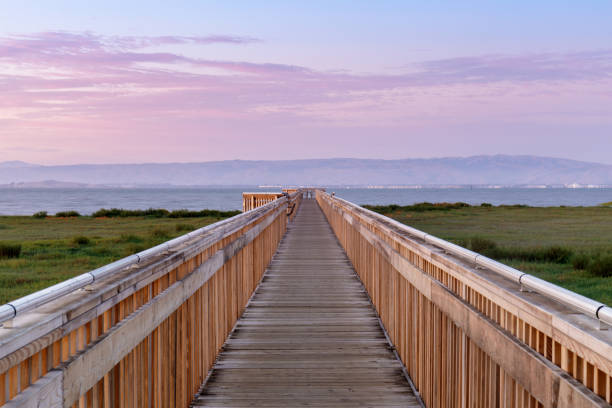Twilight over the new boardwalk at Baylands Nature Preserve. stock photo
