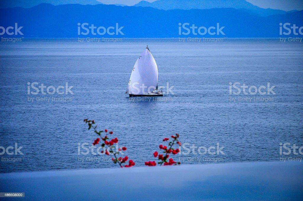 Twilight sailing stock photo