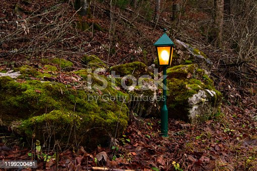 twilight scary fairy tale forest landscape without people and lantern yellow illumination atmosphere outdoor nature environment
